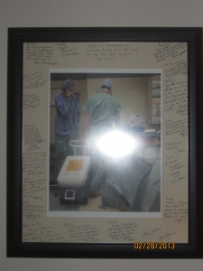 Transplant picture