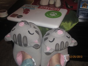Santa brought soft kitty slippers!
