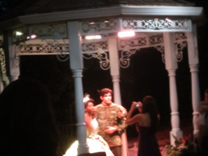 Tiana and Naveen from The  Princess and the Frog.