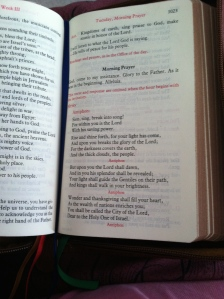 Daily psalms (in the four week cycle)