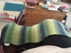 Length of the cowl before yesterday's knitting.