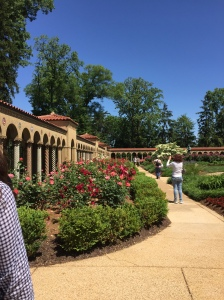 Photo Essay: Franciscan Monastery Washington D.C. @emily_m_deardo