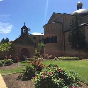 photo essay, Franciscan Monastery Washington D.C. @emily_m_deardo