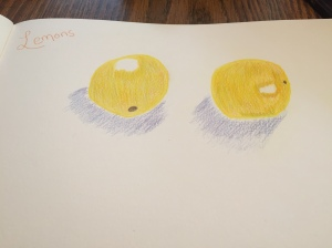Learning to draw with Sketchbook Skool @emily_m_deardo